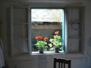 window-186783_640-300x225