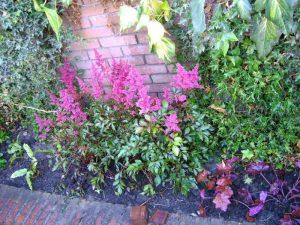 Goede tuinontwerp Tilburg realiseren?